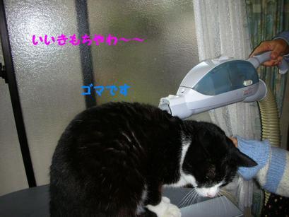 20081_011