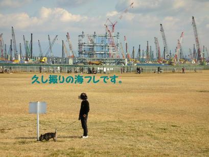 2008_012_2