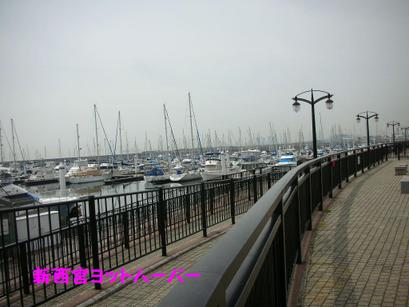 20084_038_3