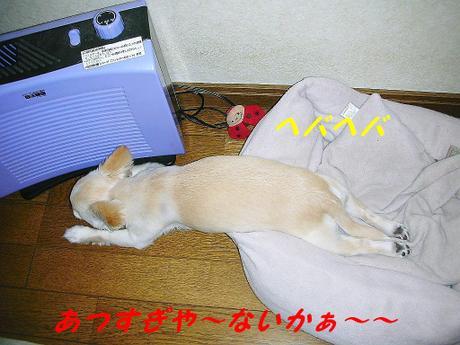 20086gatu_037