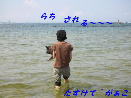 2008_012