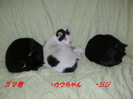 200912_092