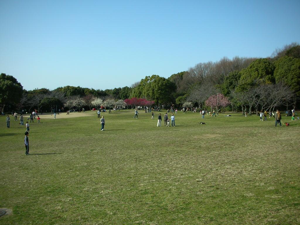 20091_005