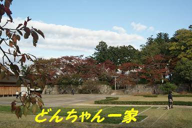 2009113_151_2