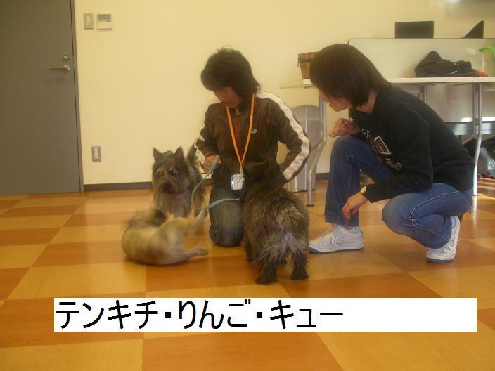 200611_005_3